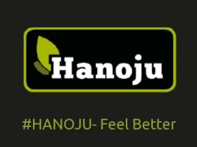 Hanoju-Shop.de – Schnittstelle Plentymarkets