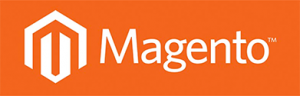 Magento-Shop-Programmierung